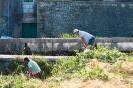 Akcija čišćenje Vrljike-14